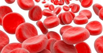 причины высокого уровня соэ в крови