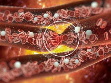 снижение холестерина диетой