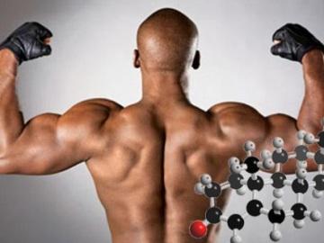 testosteron (5)