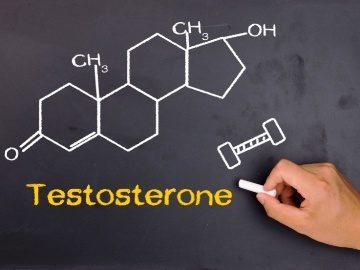 testosteron (6)