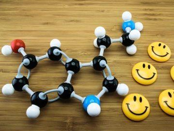 serotonin-2